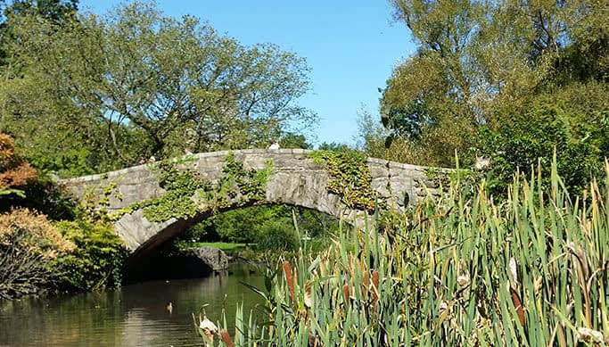 Old Stone Bridge in Central Park