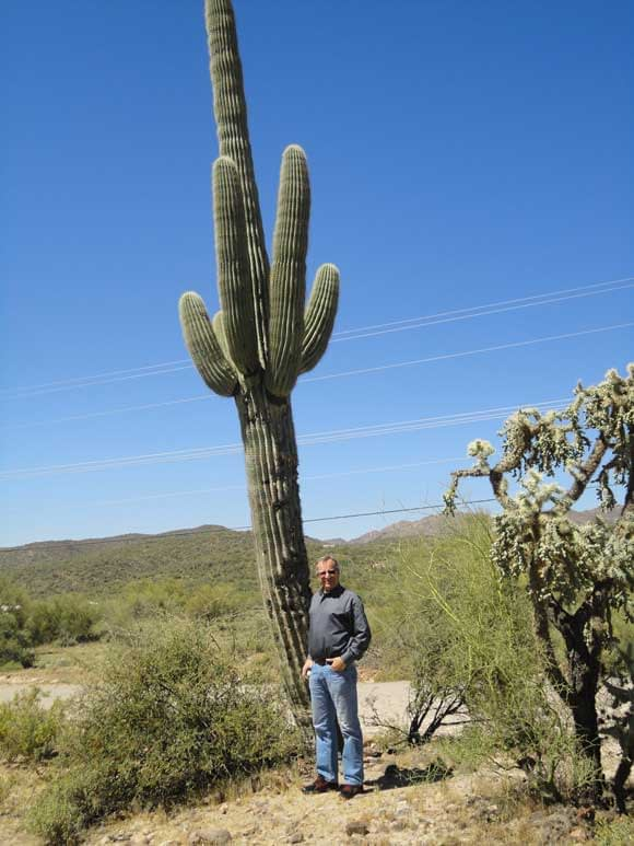 Two tall specimens, the pone on the left is the Cactus