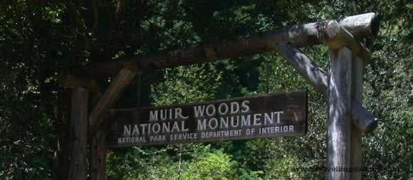 Welcome to Muir Woods